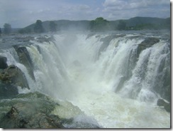 gushing-falls-in-tamil-nadu